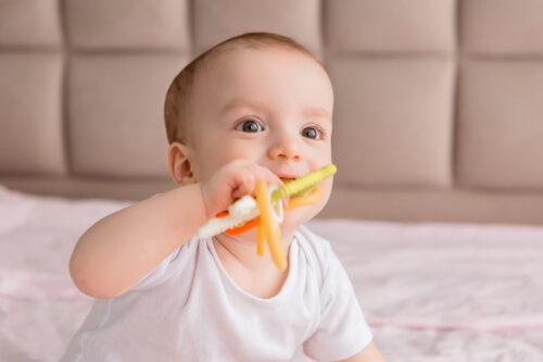Gryzaki do podawania pokarmu dla niemowląt