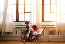 Jak wybrać odpowiednie legowisko dla psa